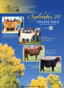Mitteness Family Angus Online Sale