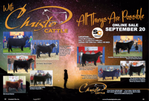 Christo Cattle Online Sale
