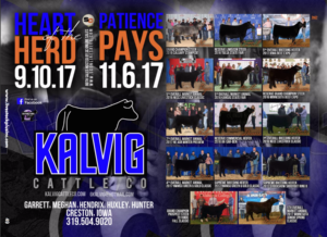 "Kalvig Cattle ""Heart of the Herd"" Sale @ Creston 