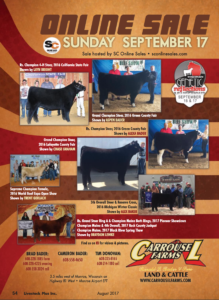 Carrousel Farms Online Sale