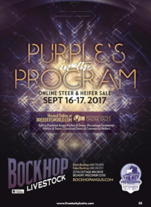 "Bockhop ""Purples in the Program"" Online Sale"