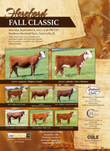 Hereford Fall Classic @ Taylorville | Illinois | United States