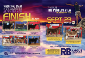 The Perfect View Online Pasture Sale