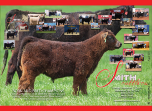 Smith Cattle Pro Tour Sale @ Estherville | Iowa | United States