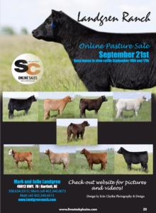 Landgren Online Pasture Sale @ Bartlett | Nebraska | United States