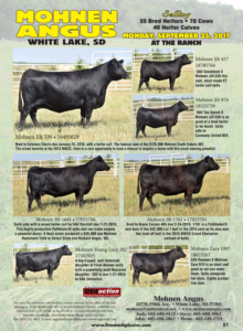Mohnen Angus Production Sale @ White Lake | South Dakota | United States