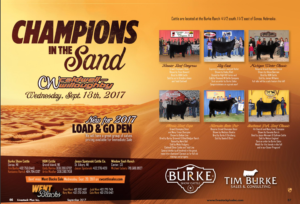 "Burke ""Champions in the Sand"" Sale"