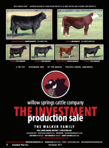 The Investment Production Sale @ Willow Springs Cattle Company | Prairie Grove | Arkansas | United States