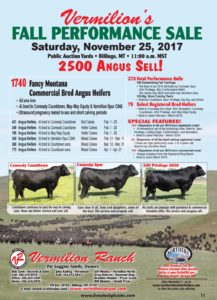 Vermilion's Fall Performance Sale @ Public Auction Yards | Billings | Montana | United States