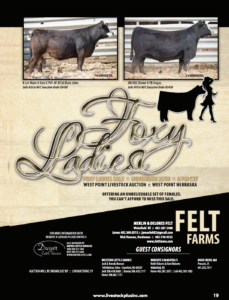 Foxy Ladies Sale @ West Point Livestock Auction | West Point | Nebraska | United States