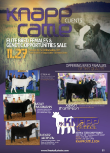 Knapp Cattle Elite Bred Females & Genetics Opportunities Sale @ SC Online Sales