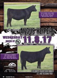 Kiesewetter Angus Online Sale @ Angus Live