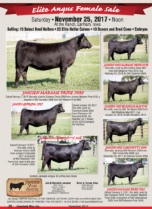 Elite Angus Female Sale @ Janssen Voss Angus | Earlham | Iowa | United States