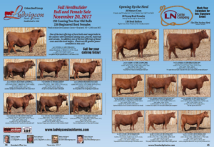 Fall Herdbuilder Bull and Female Sale @ Weschenfelder Development Center | Shepherd | Montana | United States
