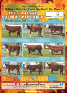 DaKitch Hereford Farms Fall Female Sale @ DaKitch Hereford Farms | Ada | Minnesota | United States