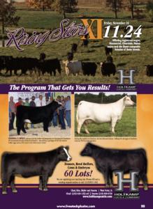 Rising Stars XI @ Holtkamp Cattle Company | West Point | Iowa | United States