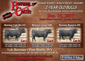 Bowman Cattle @ Platte Valley Livestock | Gering | Nebraska | United States
