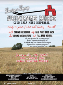 Wagonhammer Ranches Club Calf Herd Dispersal @ Dunlap Livestock Auction | Dunlap | Iowa | United States