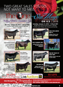 National Western Simmental Sale @ Livestock Center Auction Arena | Denver | Colorado | United States