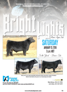 Bright Lights Maine-Anjou Sale @ In the yards | Denver | Colorado | United States