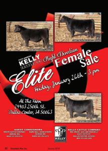 Kelly Cattle Co. Right Direction Female Sale @ At the farm | Dallas Center | Iowa | United States