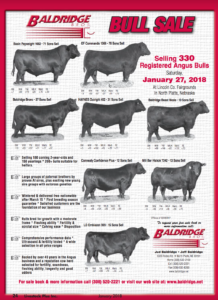 Baldridge Bull Sale @ Lincoln Co. Fairgrounds | North Platte | Nebraska | United States