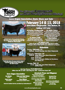 Iowa Angus Association State Show and Sale @ Iowa State Fairgrounds | Des Moines | Iowa | United States