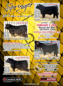 Springer Simmental Sale of Value Based Genetics @ Deeorah Sale Barn | Decorah | Iowa | United States