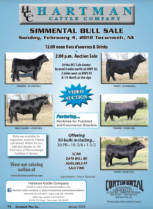 Hartman Cattle Company Simmental Bull Sale @ At the ranch | Tecumseh | Nebraska | United States