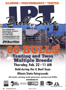 IPT Bull Sale @ Illinois State Fairgrounds | Springfield | Illinois | United States