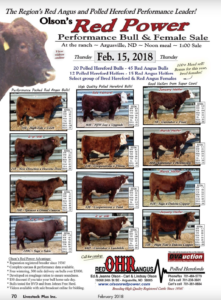 Red Power Performance Bull & Female Sale @ At the ranch | Argusville | North Dakota | United States