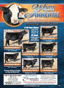 Walsh Simmental Pursuit of Excellence Bull & Female Sale @ At the farm | Hubbard | Nebraska | United States