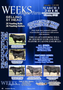 Weeks Angus Farm @ Madison County Livestock Auction | Winterset | Iowa | United States