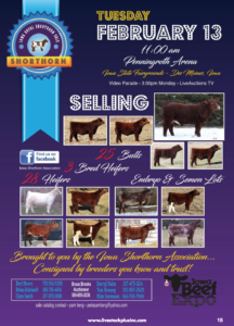 Iowa Royal Shorthorn Sale @ Iowa State Fairgrounds  | Des Moines | Iowa | United States