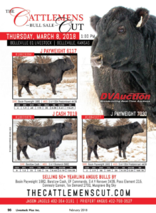 The Cattlemen's Cut Bull Sale @ Belleville 81 Livestock | Belleville | Kansas | United States