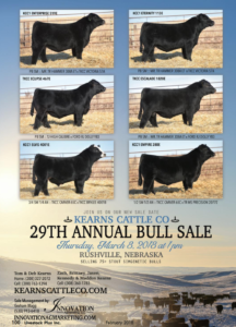 Kearns Cattle Co 29th Annual Bull Sale @ At the ranch | Rushville | Nebraska | United States