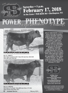 6th Annual Riley Bros. Angus Bull Sale @ At the farm | Darlington | Wisconsin | United States