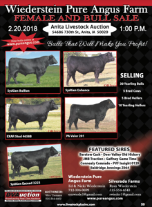 Wiederstein Pure Angus Farm Female and Bull Sale @ Anita Livestock Auction | Anita | Iowa | United States