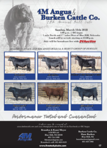 4M Angus & Burken Cattle Co 11th Annual Bull Sale @ 4M Angus | Blue Hill | Nebraska | United States