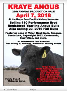 Kraye Angus Annual Production Sale @ Kraye Sale Facility  | Mullen | Nebraska | United States