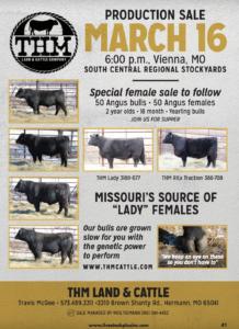 THM Production Sale @ South Central Regional Stockyards | Vienna | Missouri | United States