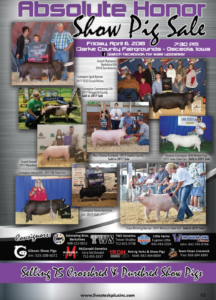 Absolute Honor Show Pig Sale @ Clarke County Fairgrounds | Osceola | Iowa | United States