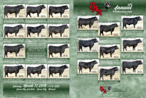 Brinkley Angus Ranch Annual Production Sale @ Green City Livestock | Green City | Missouri | United States
