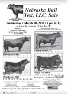 Nebraska Bull Test, LLC, Sale @ Broken Bow Livestock | Broken Bow | Nebraska | United States