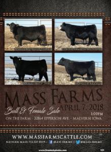 Mass Farms Bull & Female Sale @ At the farm | Malvern | Iowa | United States