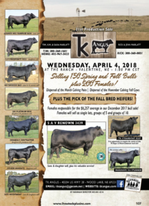 TK Angus 31st Production Sale @ At the ranch | Valentine | Nebraska | United States