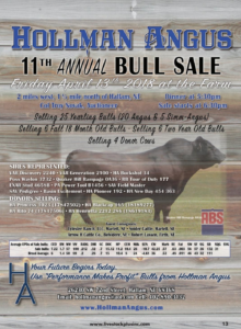 Hollman Angus 11th Annual Bull Sale @ At the farm | Hallam | Nebraska | United States