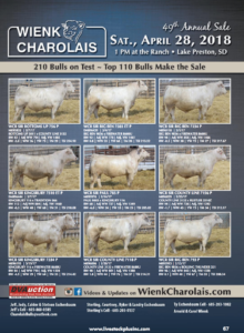 Wienk Charolais 49th Annual Sale @ At the ranch | Lake Preston | South Dakota | United States