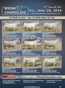 Wienk Charolais 49th Annual Sale @ At the ranch | Lake Preston | South Dakota | United States