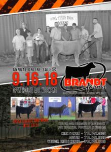 Brandt Farms Online Sale & Open House @ Brandt Farms | Corning | Iowa | United States